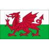 Nhận định, soi kèo CH Séc vs Wales, 1h45 ngày 9/10: Vòng loại World Cup 2022